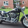 2       196915824  Harley Davidson Softail FLSTF Fat Boy Custom Cruiser  1690 CC   2012   Individual  Central London    £6,290 Pearl Black 2012 model with ABS and Harley Security System. UK DVLA registered 2015. 2 Key Fobs. Always garaged and never s